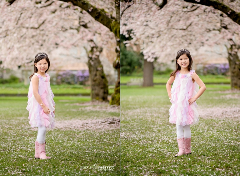 Cherry Blossoms   Seattle Child Photographer